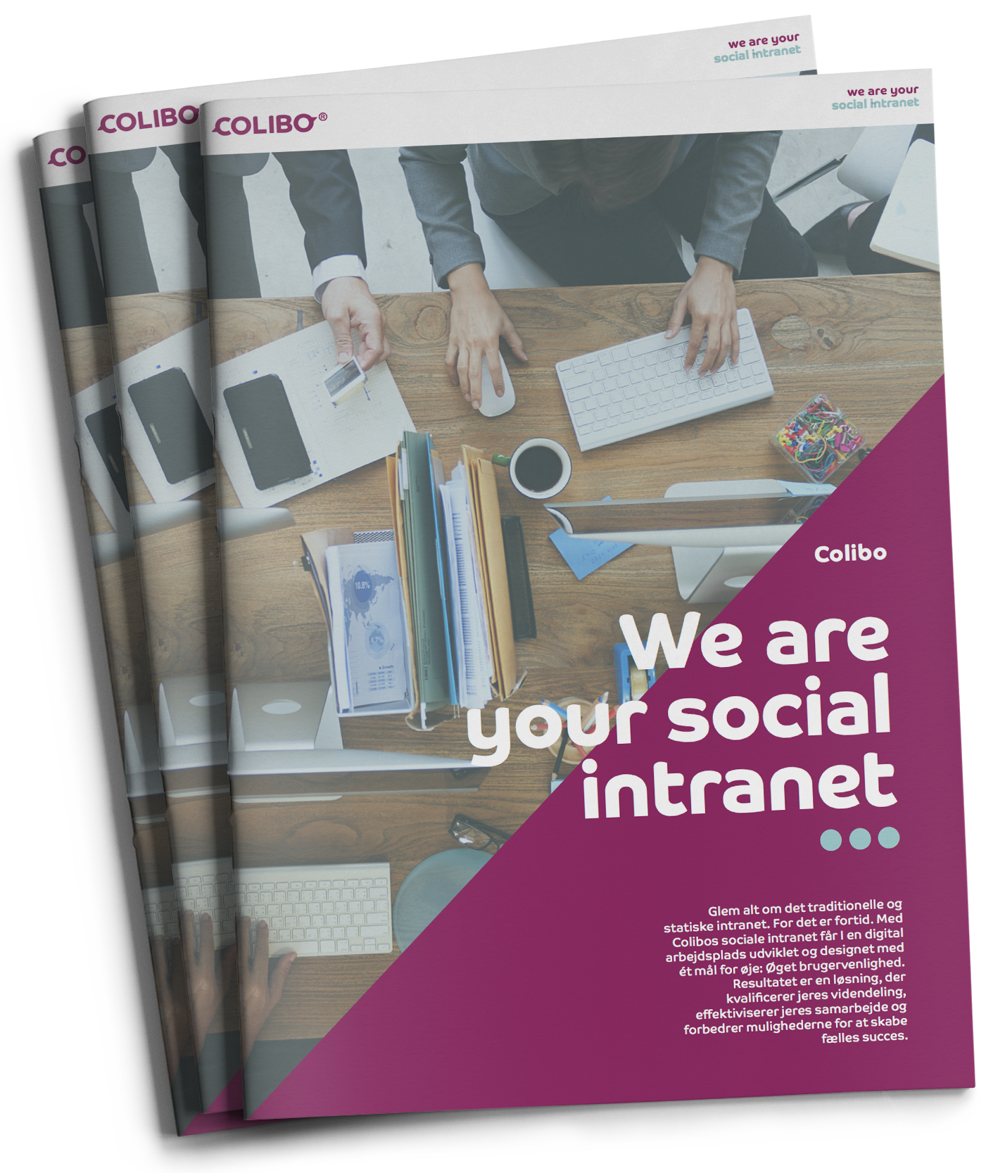 We are your modern and social intranet solution