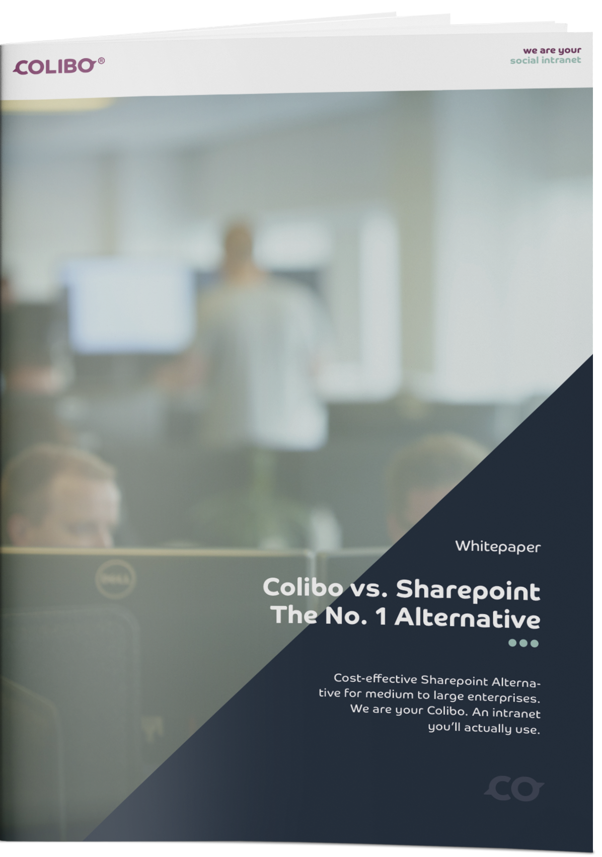 colibo sharepoint alternative whitepaper